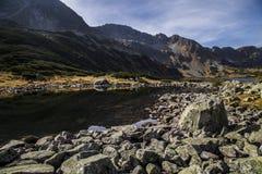 Tatra berg i vintern, landskap Fotografering för Bildbyråer