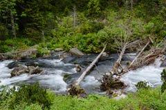Tatra-Fluss Lizenzfreies Stockbild