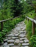 Tatra-Fußweg Lizenzfreies Stockbild