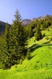 Tatra Mountains Stock Photo