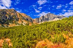 Tatra mountains Stock Photos