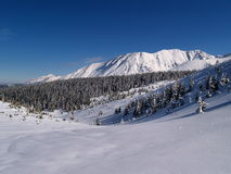 Tatra Mountains. Photo was taken during the winter 2007, simple winter landscape Stock Images