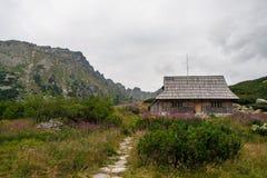 Tatra Mountains 5 lakes View in Poland Royalty Free Stock Image