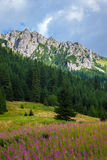 Tatra Mountains landscape Stock Photography