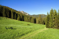 Tatra Mountains Landscape Royalty Free Stock Photos