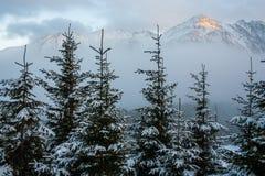 Tatra mountains panorama. Stock Photos