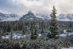 Tatra mountains panorama. Royalty Free Stock Photography