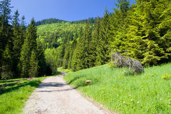 Tatra Mountains in Poland Stock Images