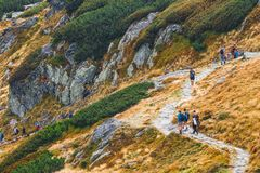 Group of people hiking in Five lakes valley in High Tatra Mountains, Poland Royalty Free Stock Photos