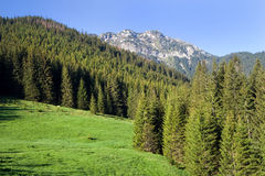 Tatra Mountains Scenery Stock Photo