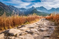Tatra mountains and strony path in autumn, Poland royalty free stock photography