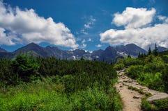 The Tatra mountains. Summer landscape Royalty Free Stock Photos