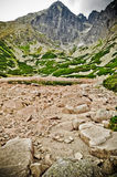 Tatra mountains view Royalty Free Stock Photo