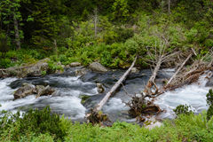 Tatra river. Tatra National Park, Zakopane, Poland royalty free stock image