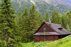 Tatra trän Arkivfoto