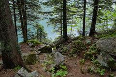 Tatra woods. Lake Morskie Oko at the Tatra National Park, Zakopane, Poland stock photo