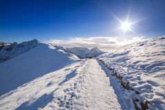 Tatrabergen in sneeuw de wintertijd Royalty-vrije Stock Fotografie