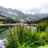 TatraMountains- dal av de fem dammen Royaltyfri Fotografi