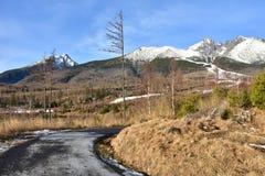 Tatranskà ¡ Lomnica滑雪胜地  库存图片