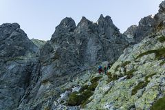 Scrambling in a shady gully in the high mountains in the morning. royalty free stock photos