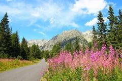 tatras της Σλοβακίας υψηλών βουνών Στοκ εικόνα με δικαίωμα ελεύθερης χρήσης