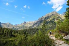 tatras της Σλοβακίας υψηλών βουνών Στοκ φωτογραφία με δικαίωμα ελεύθερης χρήσης