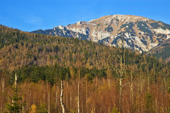 tatras высоких гор стоковое фото