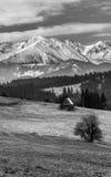 Tatras Stockbilder