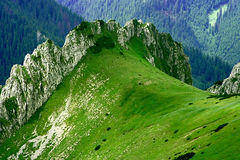Tatras Stock Foto's