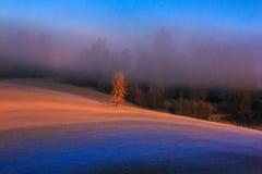 Tatras Stockbild