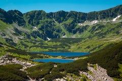 Tatras berg, dal av fem damm Arkivfoto