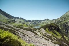 Tatras berg, dal av fem damm Royaltyfri Foto