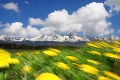 tatras de la Slovaquie de hautes montagnes images stock