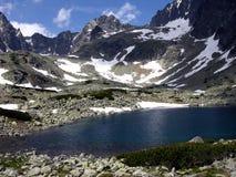 Tatras elevados 1 Imagens de Stock