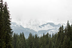 Tatras Mountains covered with snow - Poland Stock Photography