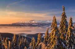 Tatras od Turbacz Zdjęcia Royalty Free