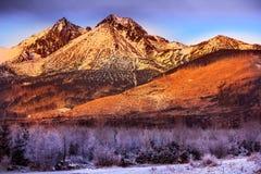 Tatras vinter Arkivbild