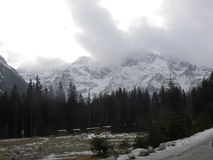 Tatrasbergen in de mist Stock Fotografie