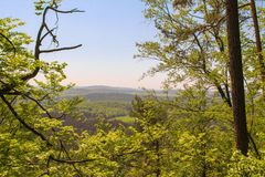 Tatrasbergen door groene pijnboombossen worden behandeld, Tsjechische Republiek die stock fotografie