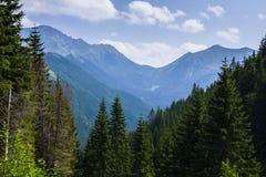 Tatrasen Arkivbild