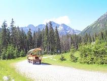 Tatry山。 库存照片