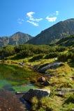 tatry湖的山 免版税库存图片