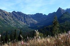 tatry的山 库存图片