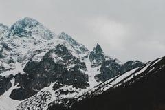 Tatry bergZakopane landskap royaltyfri fotografi