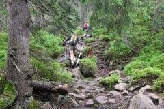 Tatry hiking Stock Photo