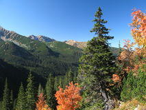 Tatry - Indian summer in Rohacka valley Royalty Free Stock Image