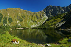 Tatry - mountain lake Royalty Free Stock Image