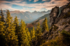 Tatry Mountains. Forests mountains trees wood slopes ridges Tatry royalty free stock photography