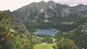 Tatry mountains in Poland. Summer nature landscape stock footage