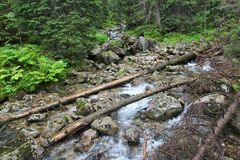Tatry mountains Royalty Free Stock Photography